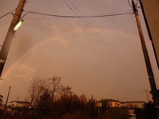 大きな虹が