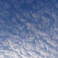 もくもくとすごい雲