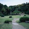 写真: CHINON CHINONEX COLOR 35mm F2.8