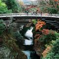 写真: 秋の猿橋
