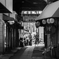 Photos: 300325-三ノ輪橋4