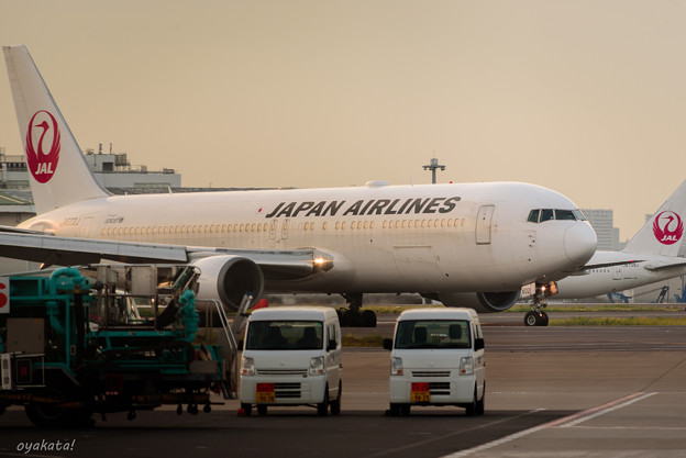 300512-羽田空港外周5