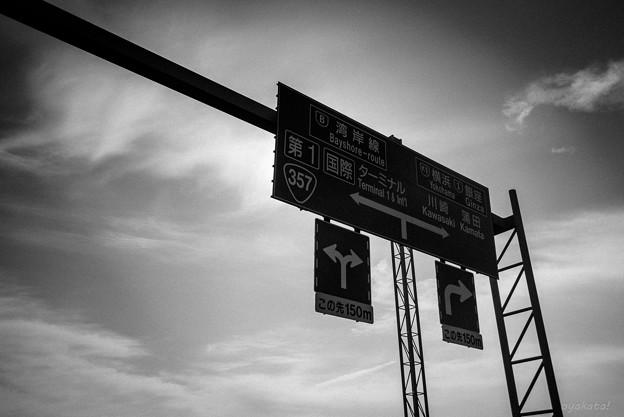 300512-羽田空港19