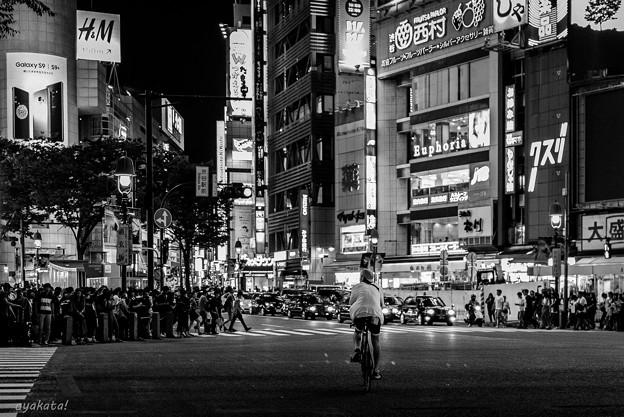 300609-渋谷31