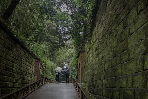 Photos: 300929-猿島3