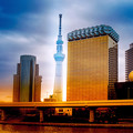 Photos: 東京スカイツリー♪