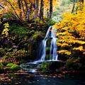 ~里山の秋~