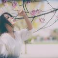 Photos: 春の唄