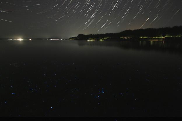 Photos: 流れ星とウミホタル