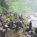 写真: 雨に濡れる賽の河原