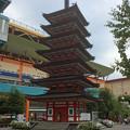 Photos: 海老名中央公園 七重の塔