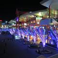 Photos: ビナウォーク・海老名中央公園 イルミネーション