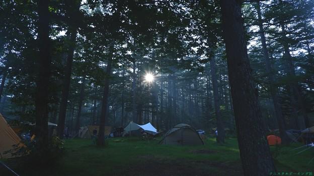 Photos: キャンプ場の朝