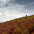 写真: 風を撮る