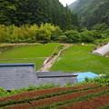 美しき日本