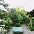 滋賀県大津市義仲寺は新緑が美しい