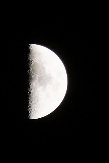 月齢6、上弦の月