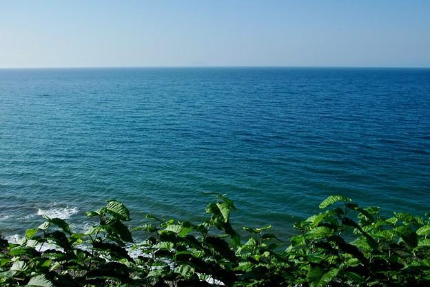 昼下がりの海