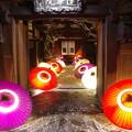 Photos: 和傘の彩