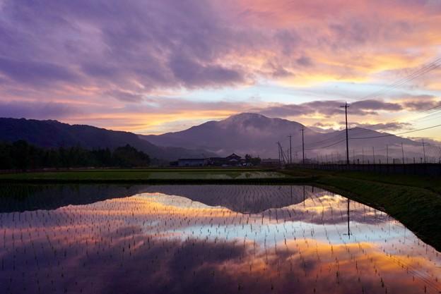田園が映した風景の美しさ