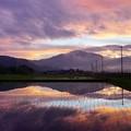 写真: 田園が映した風景の美しさ