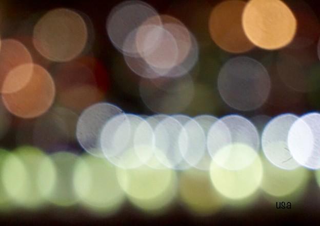 写真: 煌めく光の中で