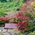 写真: 紅葉に包まれた秘窯の里