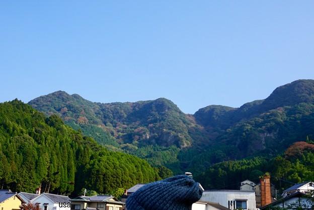 毛糸の小さなお山