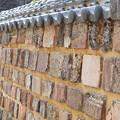 写真: トンバイ塀とくまくん