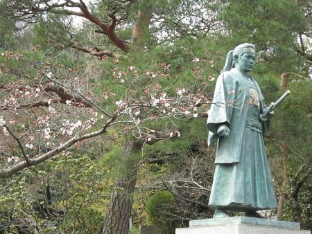土方さんと桜