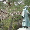 Photos: 土方さんと桜