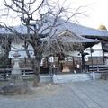 Photos: 福厳寺