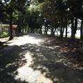 Photos: お台場公園に至る道