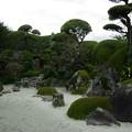 写真: 写真00215 佐多邸の庭