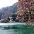 Photos: 写真00372 中綱湖