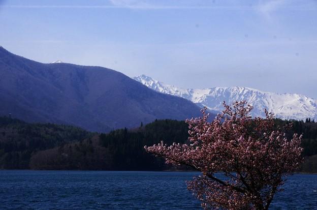 Photos: 写真00402 青木湖から