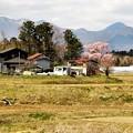 Photos: 写真00089 (2)