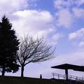 写真: 4月の午後・2018/35mmの空