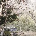 Photos: 「囚われた車(カー)」