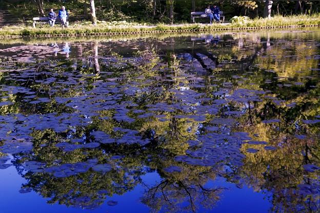 SILHOUETTE/青い大野池