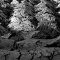 Photos: soil 耕耘