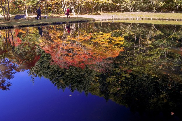 reflecting water 晩秋を歩く
