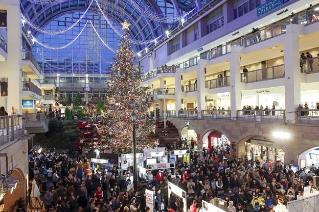 写真: Christmas tree in the atrium 2