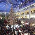 Christmas tree in the atrium 2