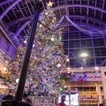 Photos: Christmas tree in the atrium 4