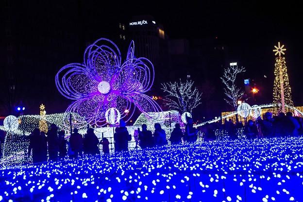 Photos: 12月のサンデー・ナイト d