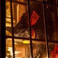 Photos: 窓際のクロネコ