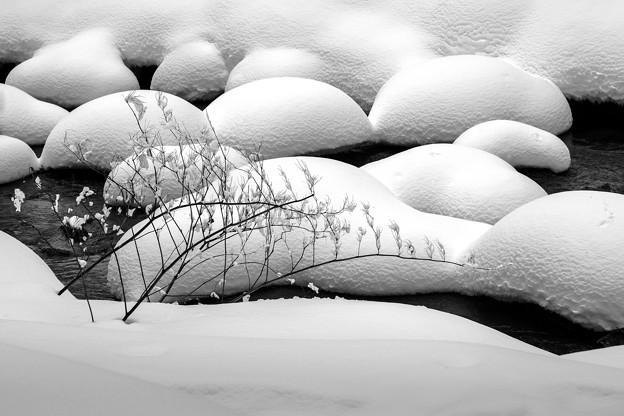 Photos: 浅春のアシリベツ/雪まんじゅう