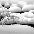浅春のアシリベツ/雪まんじゅう