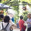 Photos: 「ミストシャワー・クール・ジャパン」